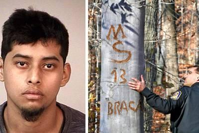 MS-13 gang member gets 30-year sentence in killing of Virginia teen stabbed 144 times, burned